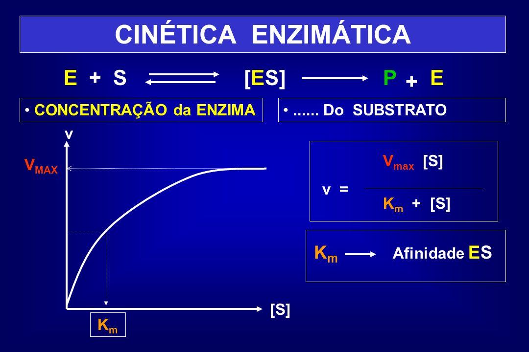 CINÉTICA ENZIMÁTICA E + S [ES] P E + Km CONCENTRAÇÃO da ENZIMA